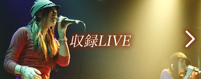 収録LIVE